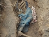 Skeletons exhumed in Matabeleland in the 1990s