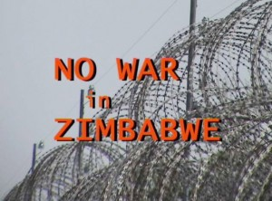 Report Cover Photo: Razor wire on the border between Zimbabwe and South Africa